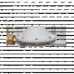 РДСГ-1-1,2